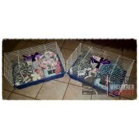 Cage Kit